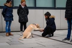 20190212-Hunde-AG-04-Web
