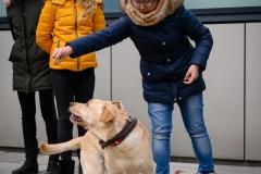 20190212-Hunde-AG-05-Web