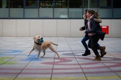 20190212-Hunde-AG-20-Web