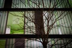 20191224-Adventsfenster-15-Web
